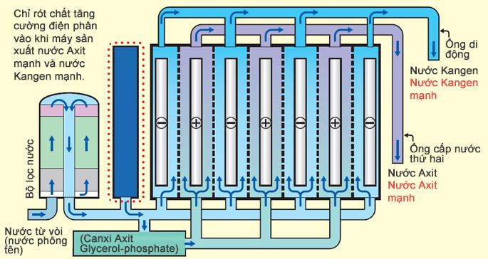 Cấu tạo Máy lọc nước ion kiềm